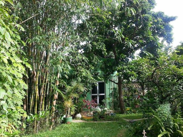 Ein Heim im paradiesischem Garten - Serrekunda - Andre
