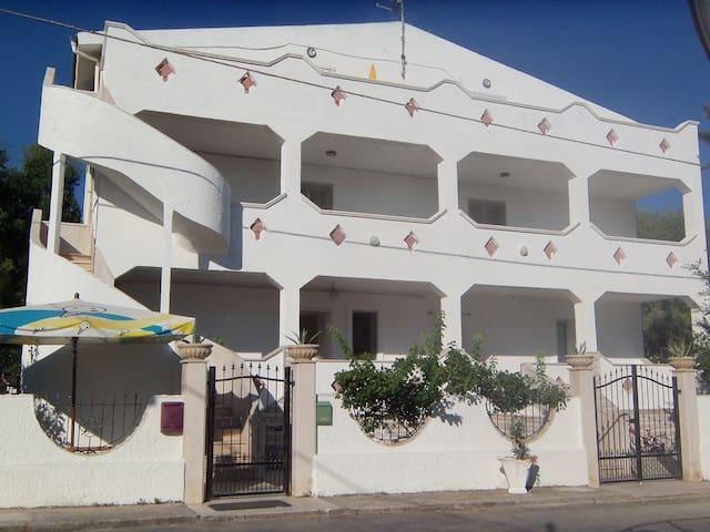 APPARTAMENTO SUL MARE DI FRONTE ALLE I.TREMITI - San Nicandro Garganico - Appartamento