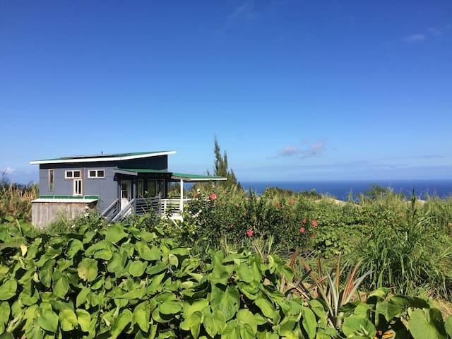 Guest house on K Farm - Honokaa - Talo
