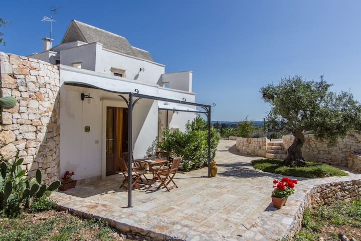 Farmhouse in olive grove with pool - Martina Franca  - Apartament