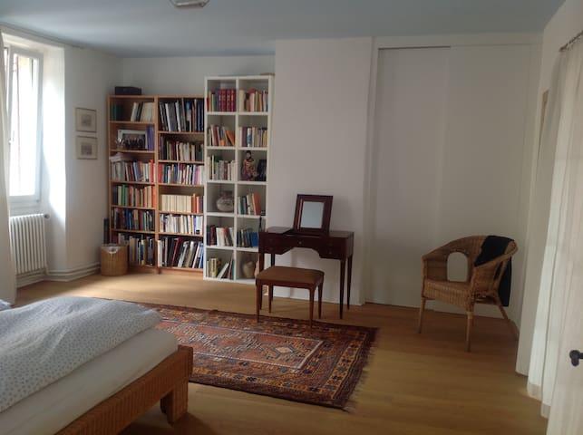 A BEAUTIFUL renovated Ticenese house - Besazio - Departamento