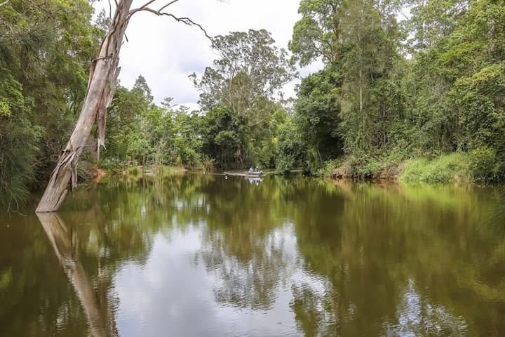 Sunshine Coast Camping by the river - Yandina - Tente
