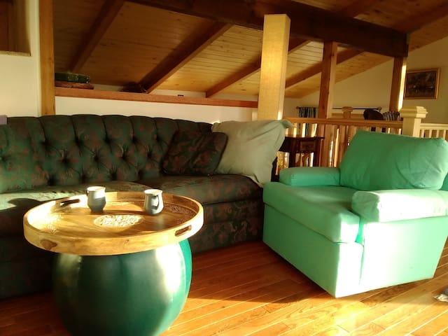 Cozy mountain home - Nederland - Casa
