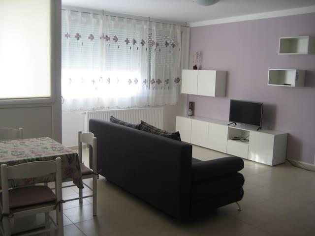 Lovely apartment in quite zone near Rijeka center - Rijeka - Departamento
