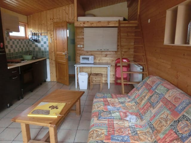 studio de 25 m2 - Saint-Lager-Bressac