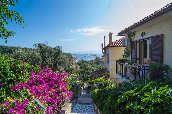 Romantic beautiful Studio with wonderful sea view - Gaios - Huoneisto