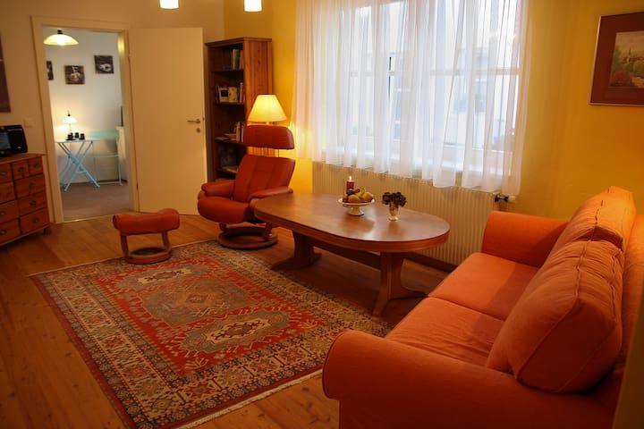 Altes Winzerhaus im Zentrum Badens - Baden - Apartamento