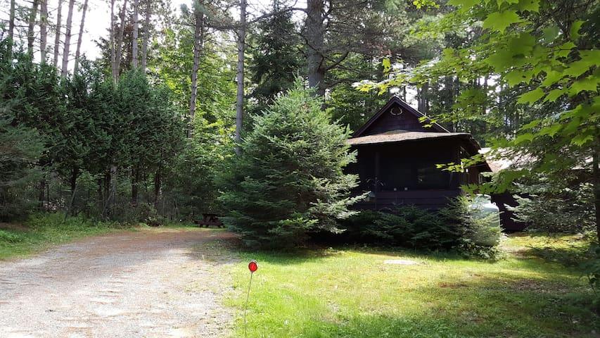 Authentic 1920 Adirondack Cabin - Lake Clear - Cabane
