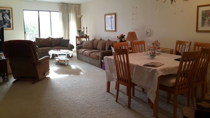 Spacious 1 Bdr all for you, Homey & comfortable - Northbrook - Appartement