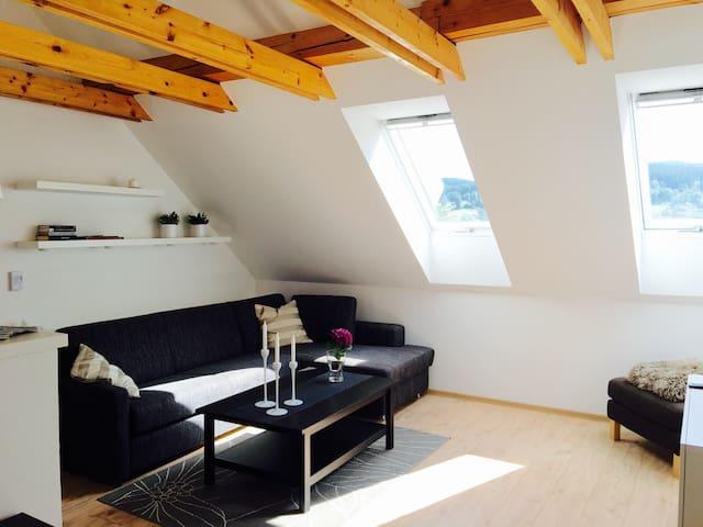 Design Apartment Jizera Mountains - Smržovka - Appartement