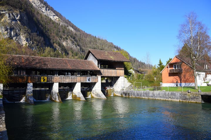The River Holiday Apartment - Unterseen - Huis