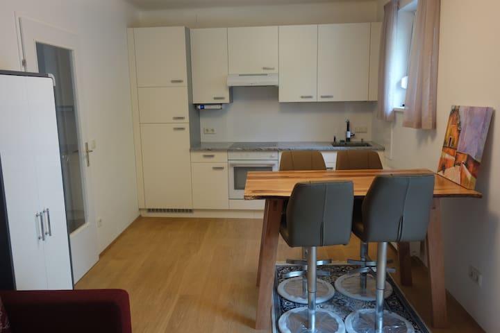 Komplett renovierte Wohnung in Graz-St.Peter - Graz - Leilighet