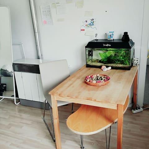Gemütliche Wohnung im Zentrum - Braunschweig - Appartement