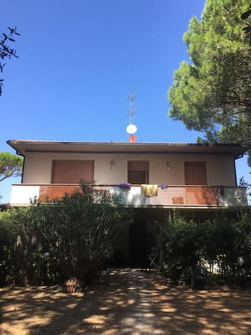 Casa nella pineta - Roccamare - Apartmen