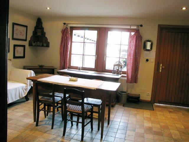 La Perle du Ried - la petite maison du village - Boofzheim - Natur lodge