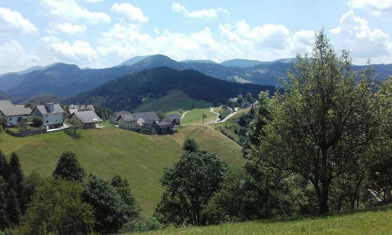 Cozy Mountain House - Zgornja Sorica - Haus