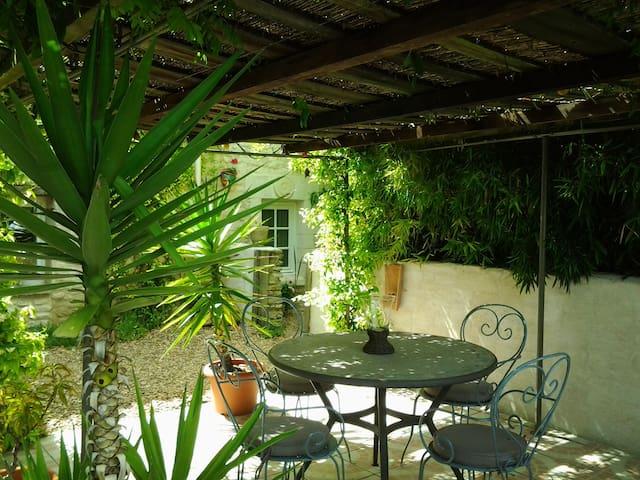 15th Century Unique Romantic Cottage  Nr Richelieu - Monts-sur-Guesnes - Casa