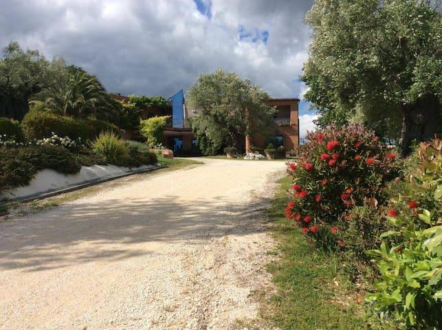 Il podere degli ulivi: nature and luxury - Colmurano - Villa