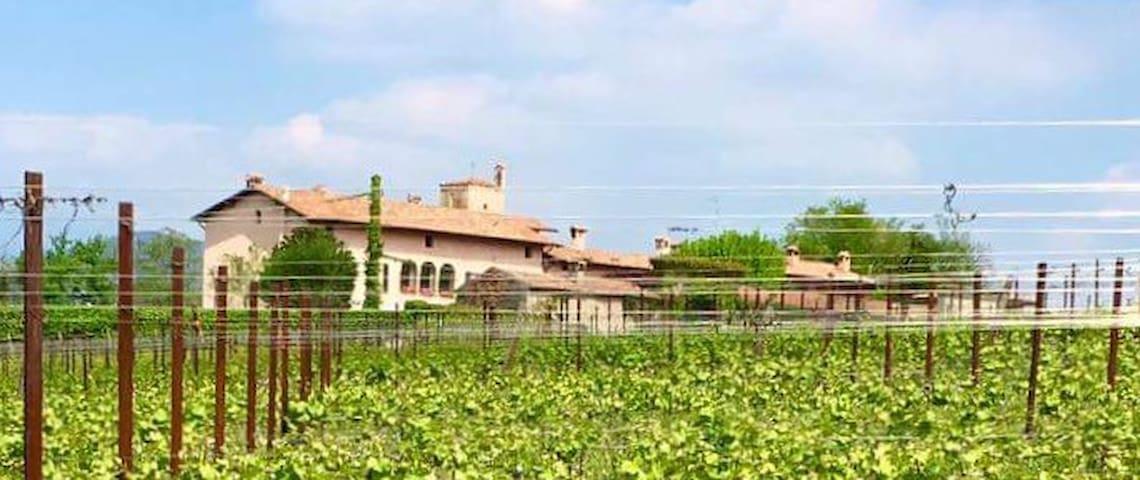 Trilocale - Cazzago San Martino - Leilighet