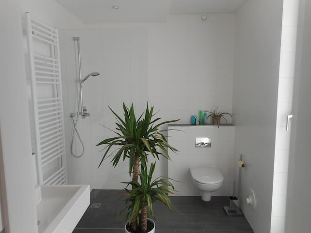 Modern room and bath, huge Terrace - Salzburg - Daire