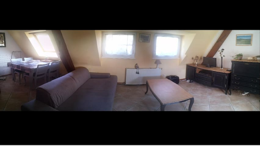 Petit appartement avec cachet et au calme - Andlau - Leilighet