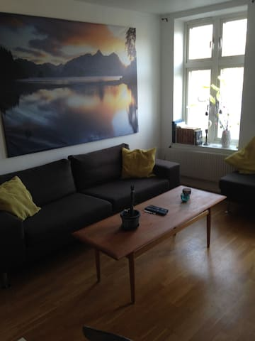 Wonderful apartment in Majorna - Göteborg - Appartement