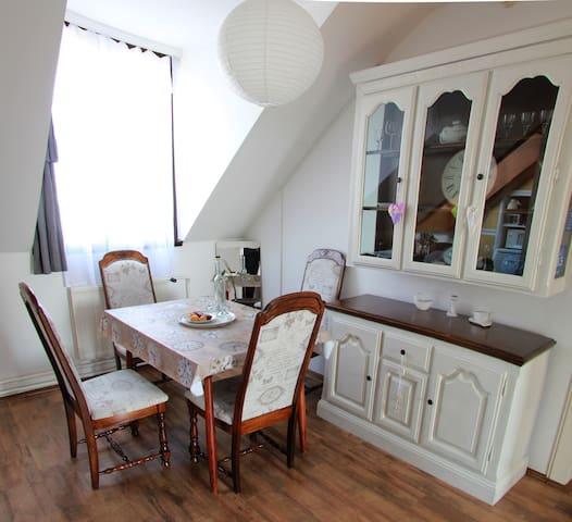 2 bedroom flat for 6 w/ free bikes - Debrecen - Daire
