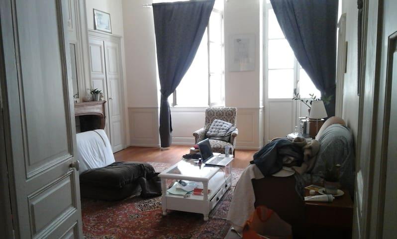 Appartement ancien rénové en plein centre ville - Chalon-sur-Saône - Pis