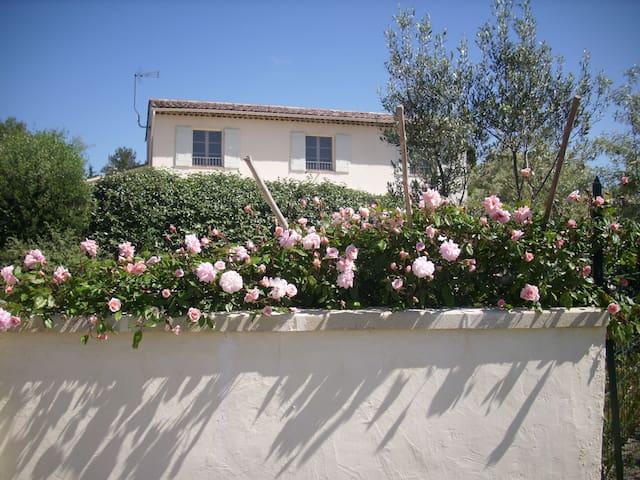 La Marsanne, a lovely place in Provence. - Lorgues