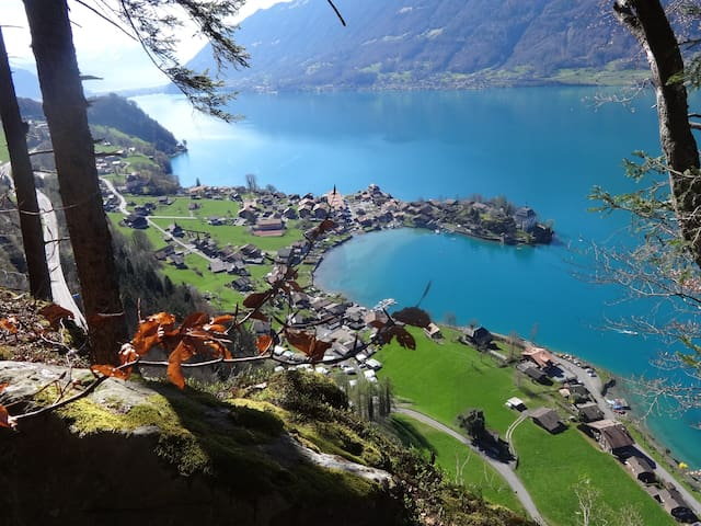 romantic typical Swiss village on Lake Brienz - Iseltwald - Ortak mülk