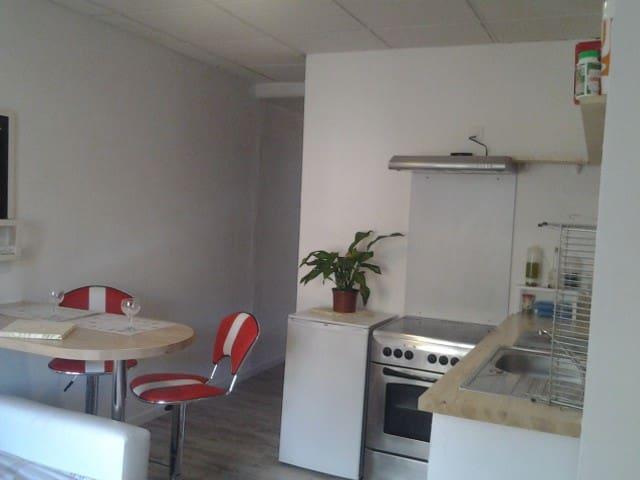 Studio indépendant  Les Glycines - Digne - Appartement