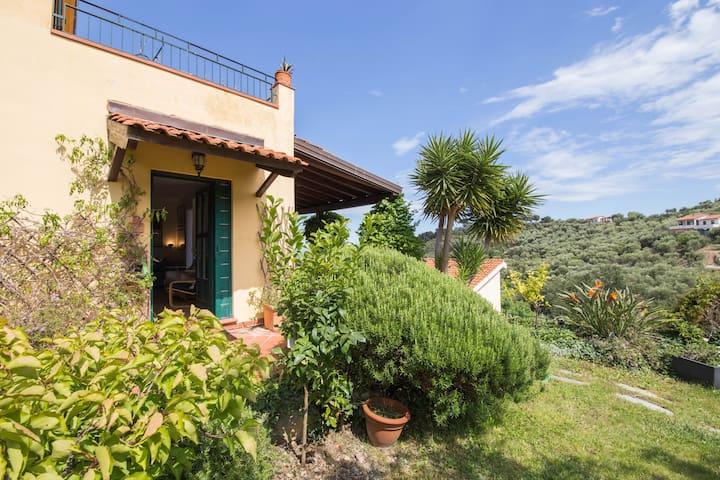 GARDEN VILLA WITH AIR CONDITIONING AND SEA VIEW - Diano Marina - Villa