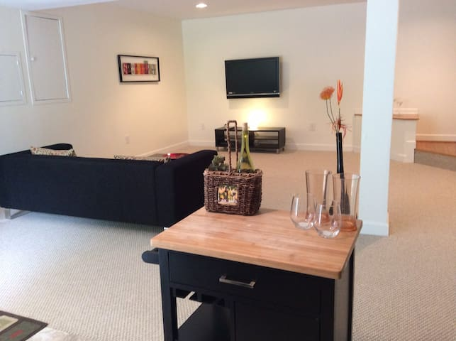 Cozy 1-bedroom basement suite near Tyson's Corner - ウィーン - 一軒家