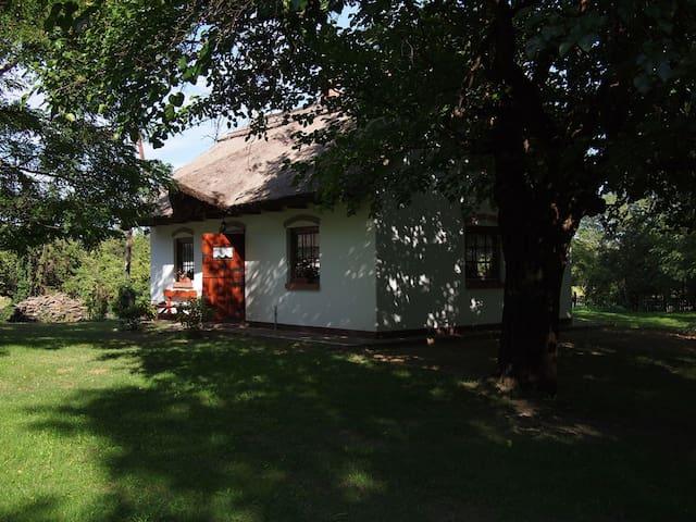 Your home in the legendary Puszta - Felsőlajos - Hus