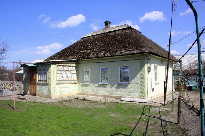 The house in the historic region - Petrykivka