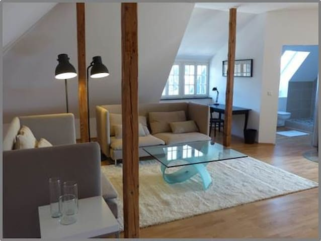 Awesome Loft in Bonn townhouse - Bonn - Huvila