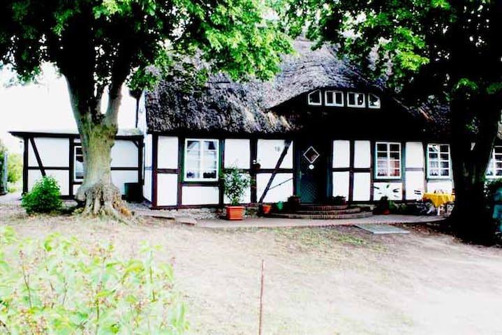 Landhaus Damerow 3 - Kargow - Appartement