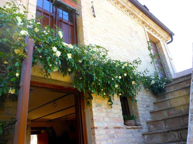 Il cielo in una stanza - un giardino sul mare - Città Sant'Angelo - Huis