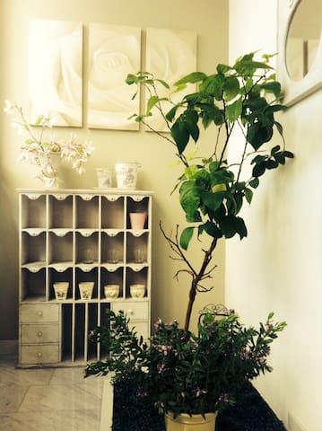 appartamento elegante ben servito - Cesena - Apartamento