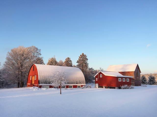 Farmstead Cottage in Hudson Valley - Stone Ridge - Cabane