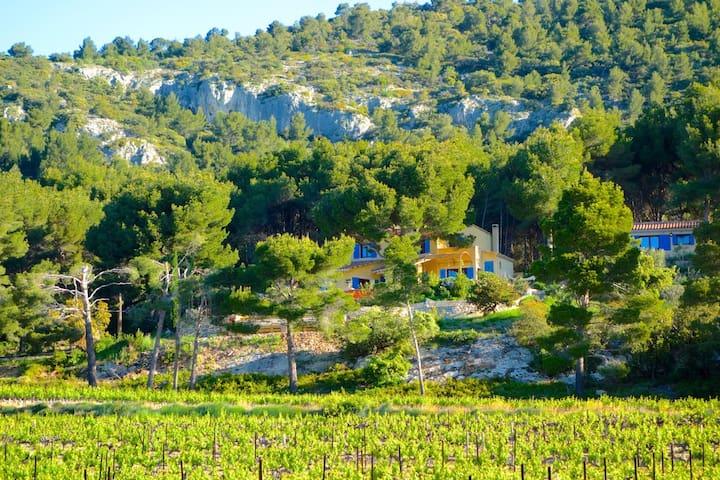 Mas Garrigue Vue imprenable Ventoux - Saint-Hippolyte-le-Graveyron - Casa
