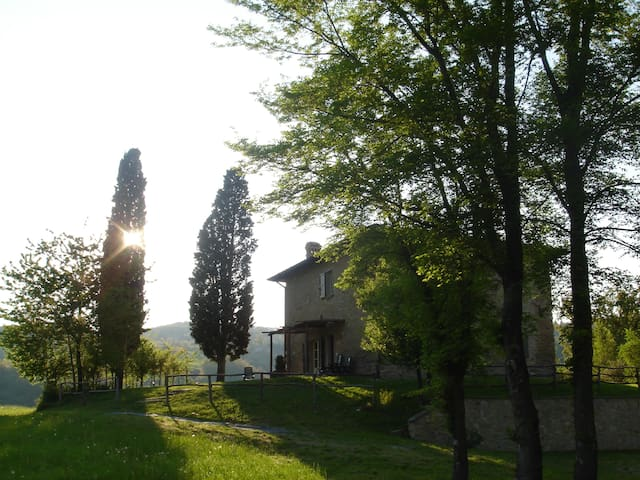 B&B in nature, a flat for families - Carpineti - Bed & Breakfast