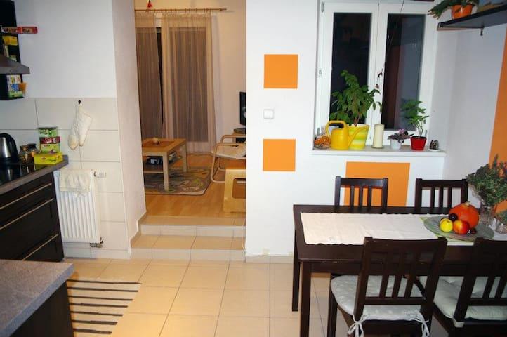 Podkrovní byt v centru Brna s tichou terasou - Brno - Apartmen