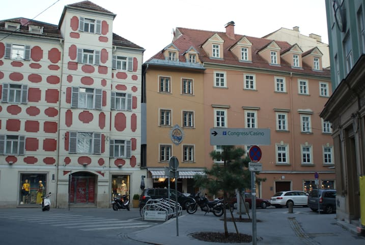 Historic City Center Flat no.1 air-conditioned - Graz
