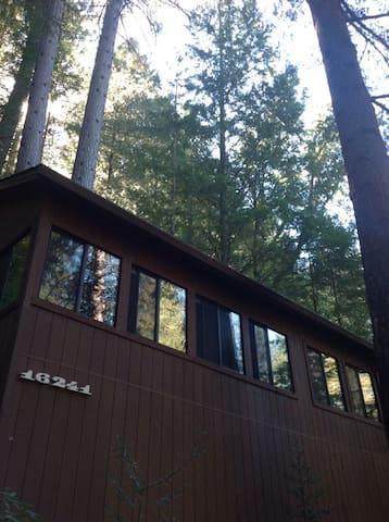 Treehouse Nest on Cobb Mountain - Middletown - Rumah