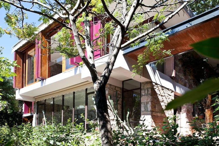 house with private wood and pool - Campiglia Marittima - Leilighet
