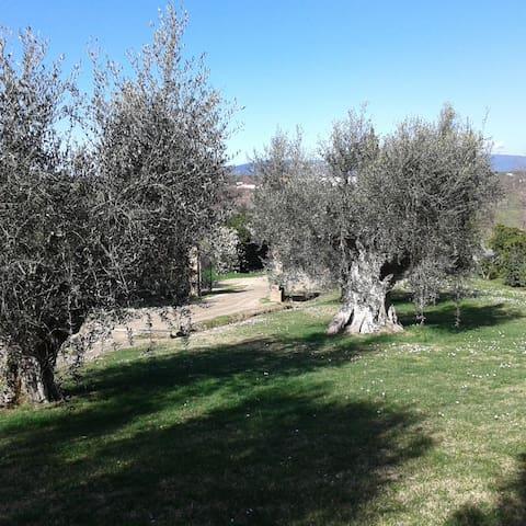 Appart  indip, giardino privato, in casale toscano - Piombino - Appartement