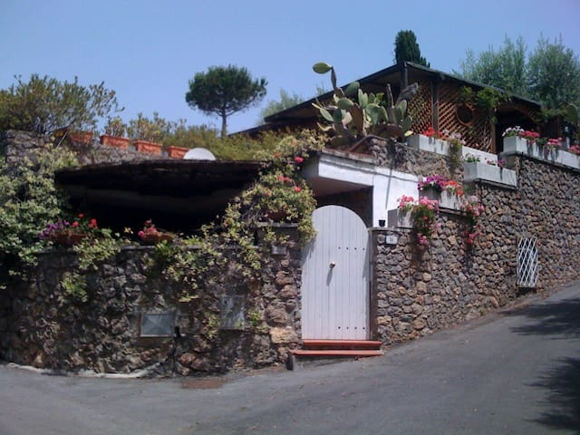 Small Villa in Tuscany - Ansedonia - Ansedonia - Haus
