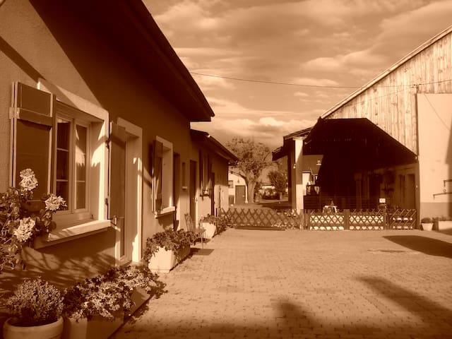 SEJOUR A LA FERME  (bel appart.  rénové de 65 m2) - Sausheim - Hus