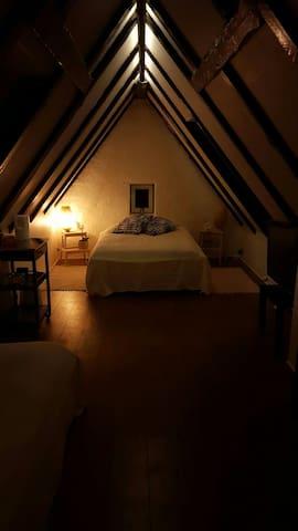 Stort hyggeligt værelse - Aalborg - Hus